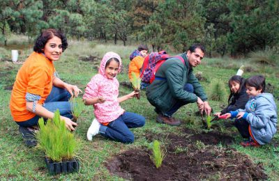 Tree Planting At Inca Cancha Community