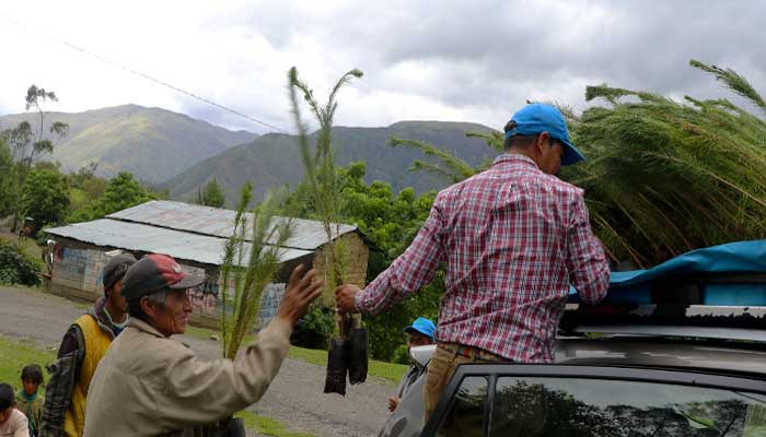 peru-private-tours-tree-planting-2019