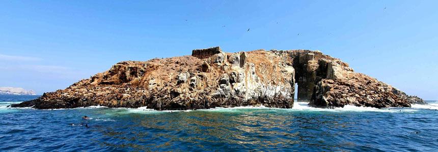 VISIT THE PALOMINO ISLANDS